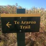 Tag 24 (15.4.): Seit einer Woche wieder daheim, Seit Drei Wochen nicht mehr auf dem Trail