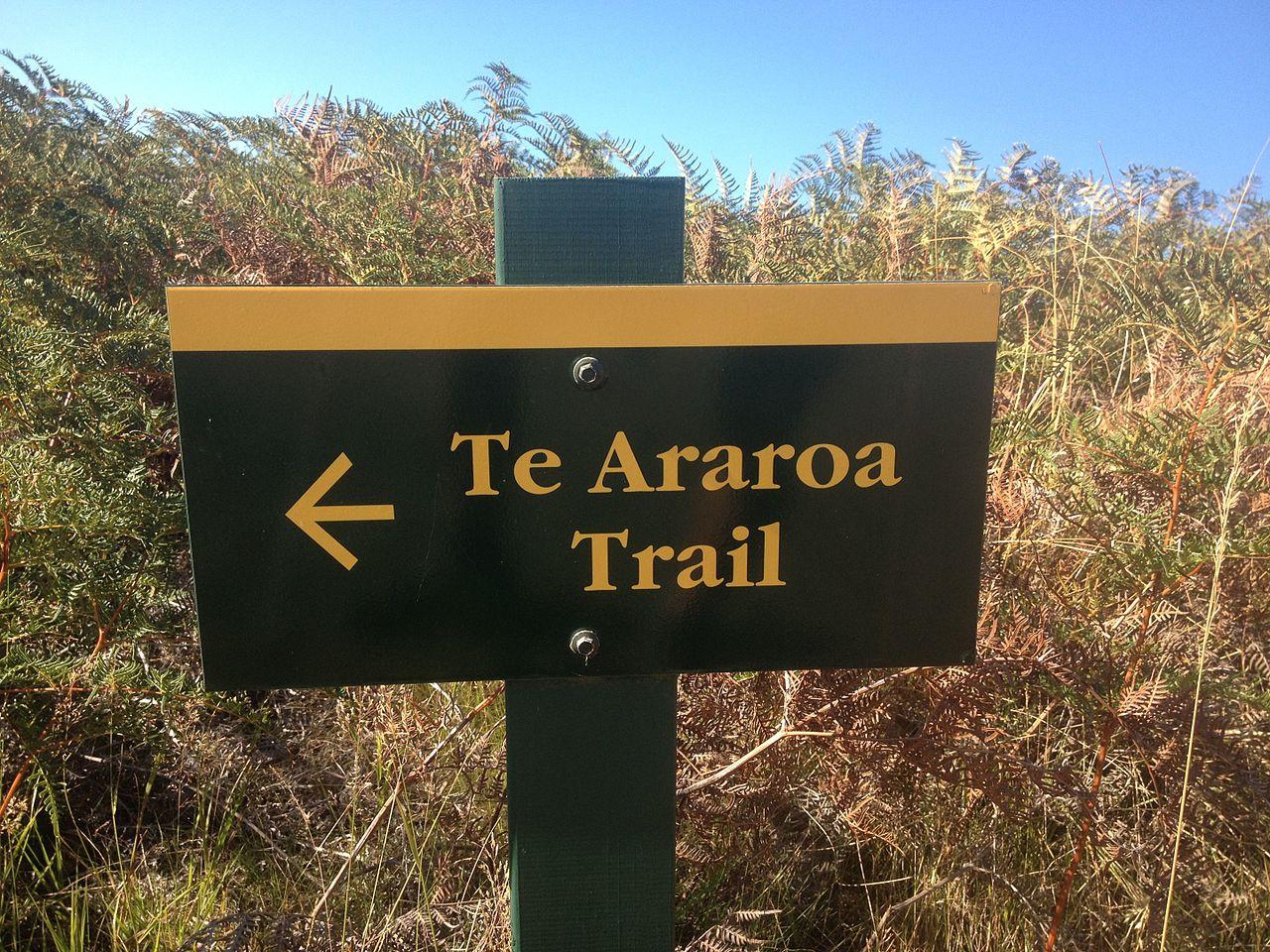 Auf zu neuen Taten: Ich wandere 2020 auf dem Te Araroa Trail in Neuseeland