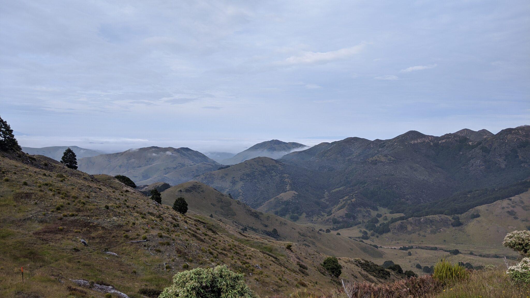 Tag 9 (21.1.): Endlich Berge