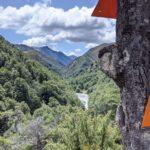 15 Erkenntnisse auf und Über den Te Araroa Trail