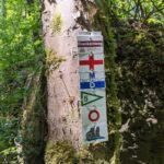 100 Kilometer auf der Jura-Linie des Main-Donau-Weges
